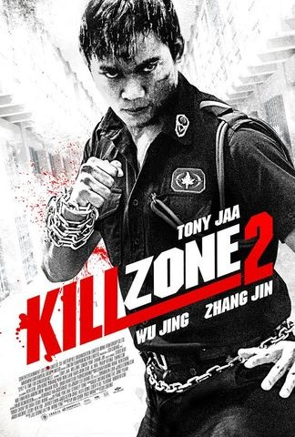 Poster for Kill Zone 2 (2015)