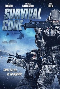 Poster for Survival Code (2013)