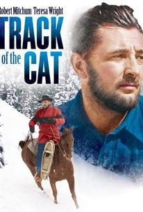 Poster for Track of the Cat (1954)