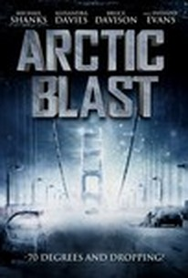 Poster for Arctic Blast (2010)