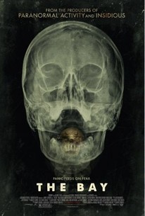 Poster for The Bay (2012)